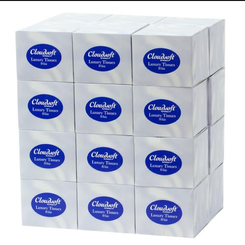 24 packs of 2 ply White Cubed Tissue