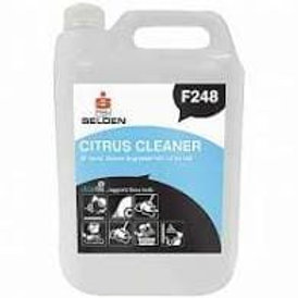 Citrus All Purpose Cleaner and Degreaser