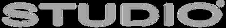 STUDIO_primary_logo_bewerkt.png
