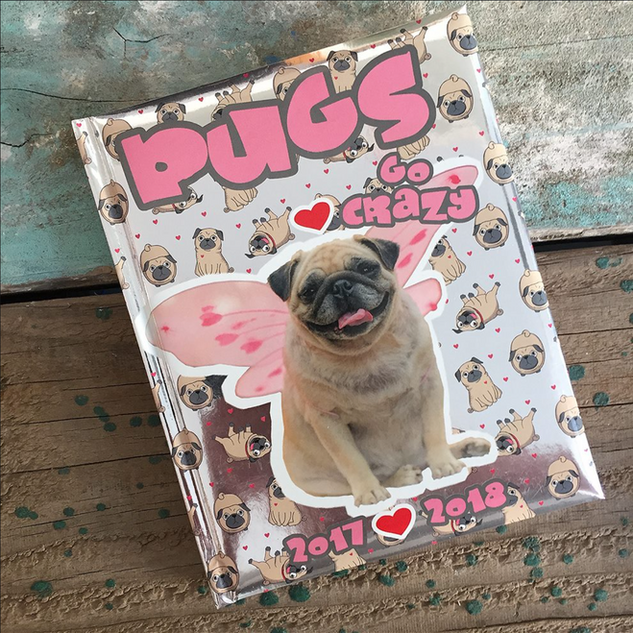 Pugs Schoolagenda