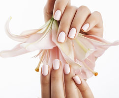 beauty delicate hands with manicure hold