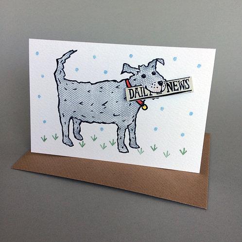 DOG PET POST CONGRATULATIONS