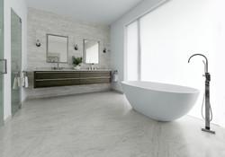 main-bath-wide-chrome.jpg