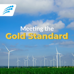 What Makes a Gold Standard Offset?