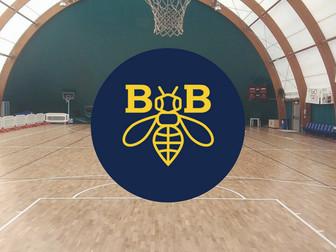 Un anno indimenticabile: la stagione 2017-2018 del Basket Bee