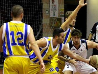 Basket Forever Formia 51- Basket Bee 63