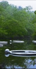 Lisa Barthelson | Rutland, MA  Water Rings