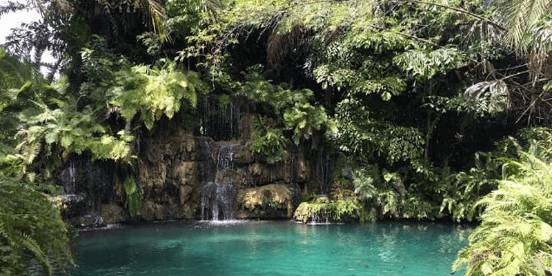 secret-garden-miami-south-dade.png
