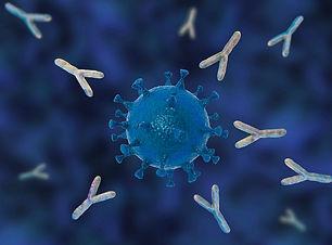 Covid-antibodies-in-blue.jpg