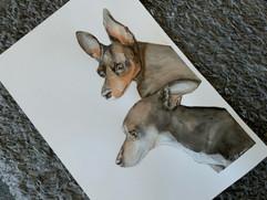 chihuahua painting 2.JPG