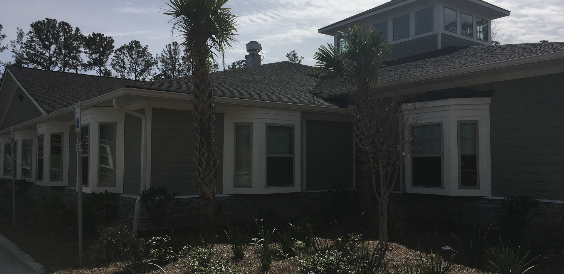 Assisted Living - Palmetto Trees.JPG