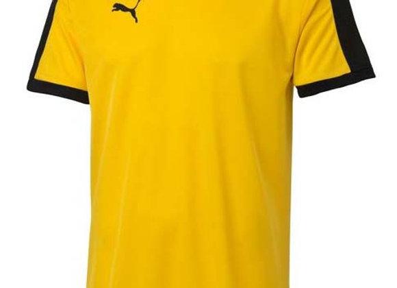 puma amarillo y negro