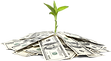 pngkey.com-100-dollars-png-8232405.png