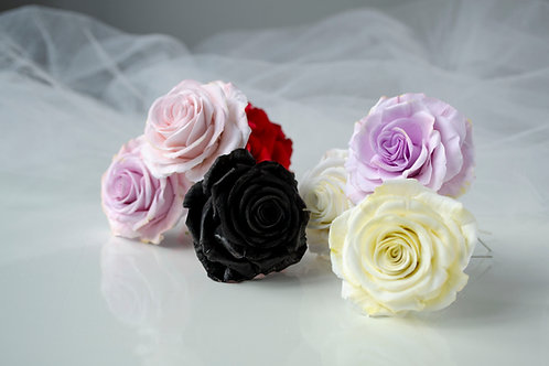 Pics à cheveux mariée, Rose L