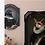 Thumbnail: Le Corbeau