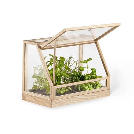 Design-House-Stockholm-Greenhouse-Mini-Esche-geoeffnet-Freisteller.jpg