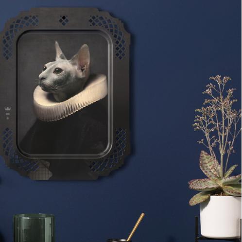 Le chat plateau
