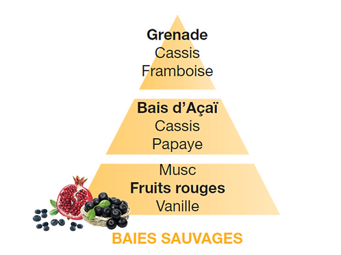 Baies Sauvages 500ml