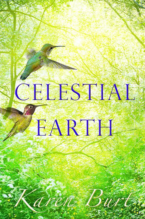 'Celestial Earth' Book