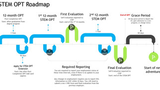 STEM OPT申请完整攻略(含I-983表格填写指南)