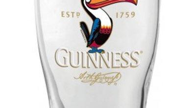Guinness Toucan 20 oz Glass - Packed 24
