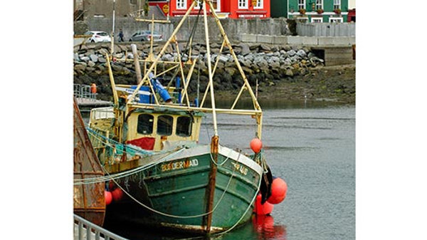 Irish Harbor Father's Day