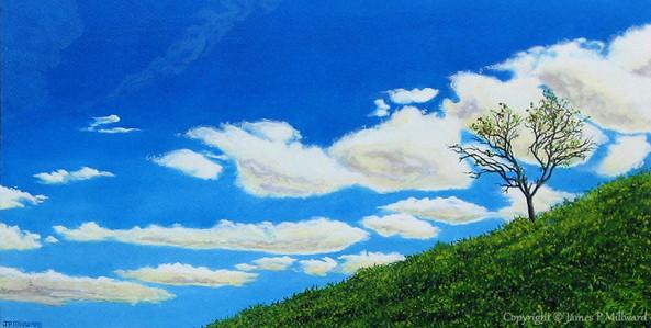 Sky, clouds, tree, earth (Acrylic)