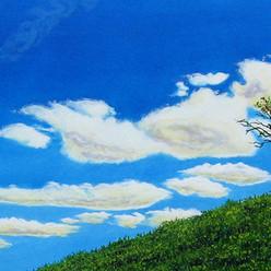 Sky clouds tree earth