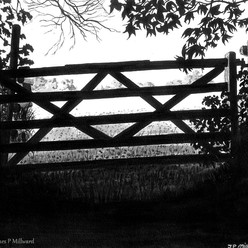 Gate and beyond