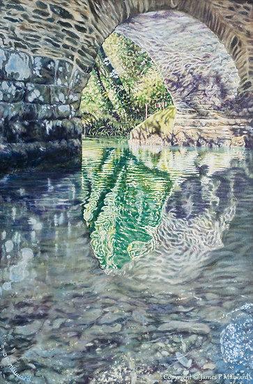 Summer reflection  (Original)