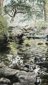 Rockpools on the Erme (Tinted graphite)