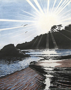 Retreaating sun (Tinted graphite)