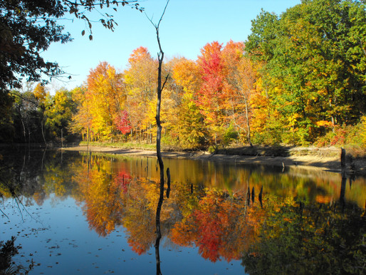 Top 5 Ohio State Parks