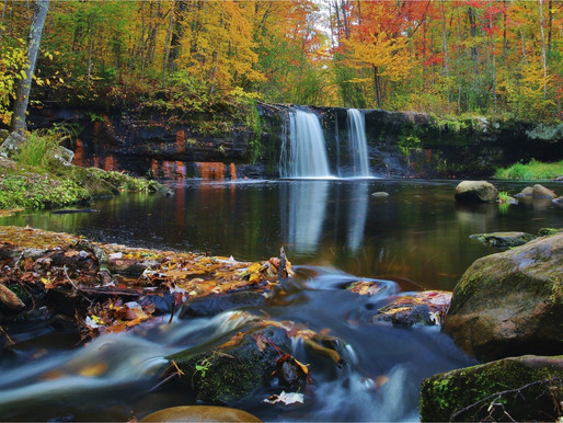 Top 5 Minnesota State Parks