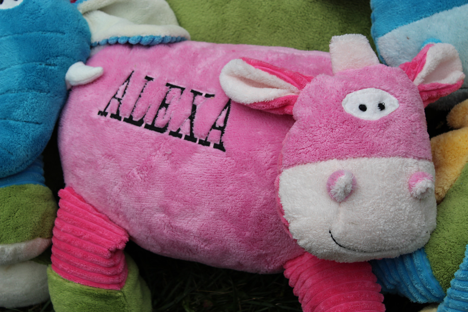 Xtra Large Keepsake Pillow- Girl Cow