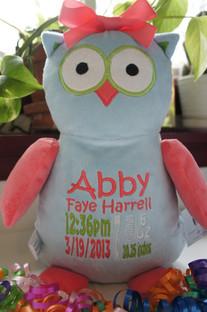 Owl Cubbie