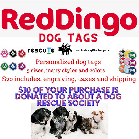 red dingo (1).png