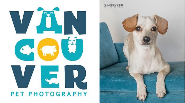 Van pet photography.png