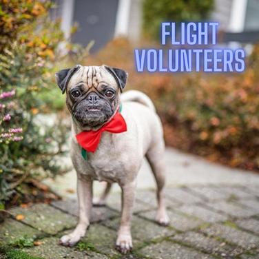 Flight Volunteers