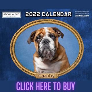 2022 Calendars.png