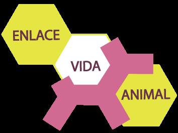 Eva Enlace Vida Animal AC