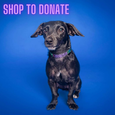 Shop to donate