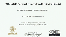 Lock #2 Aussie in AKC Owner-Handler Series