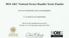 Lock #2 Aussie in AKC Owner-Handler Series
