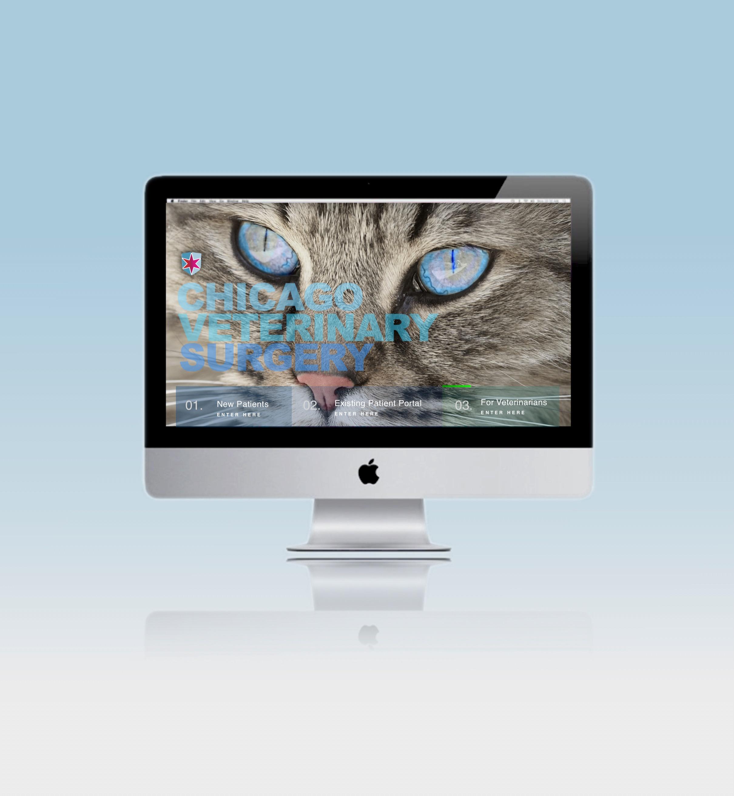 Miami Advertising Agency vet homepage_ed