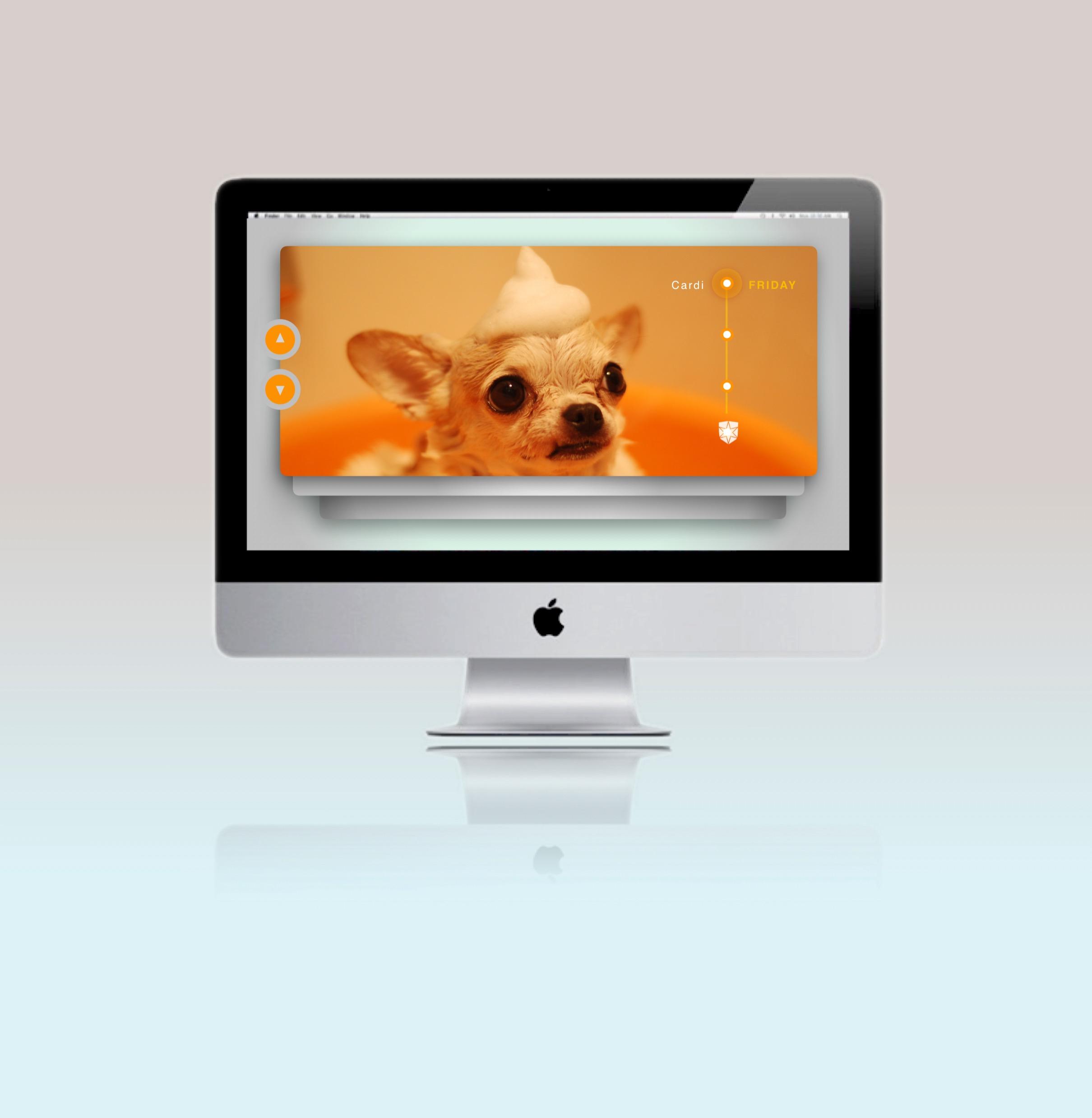 Miami Advertising Agency vet web_edited.