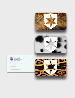 Miami Advertising Agency vet cards