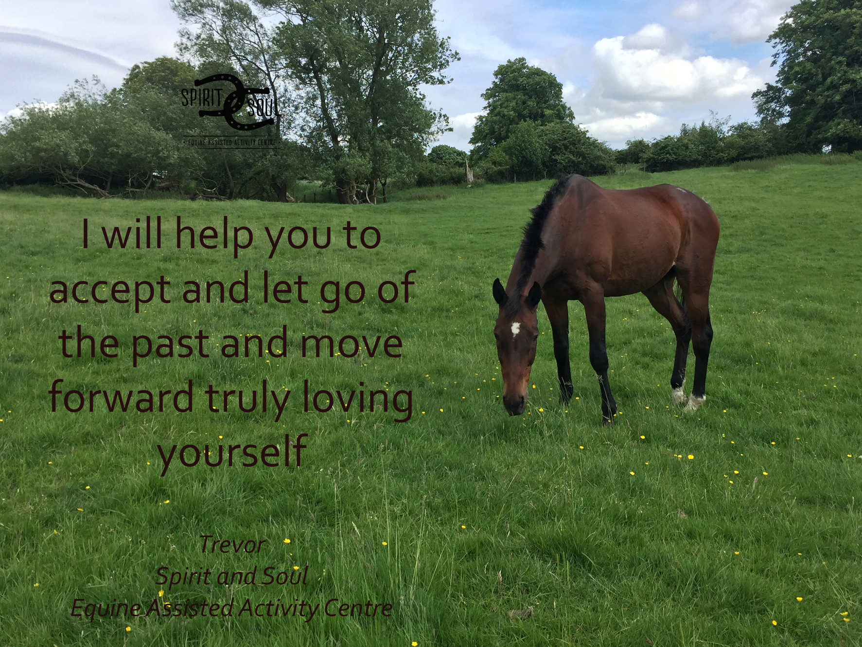 About Us | Spirit and Soul Equine Assisted Activity Centre