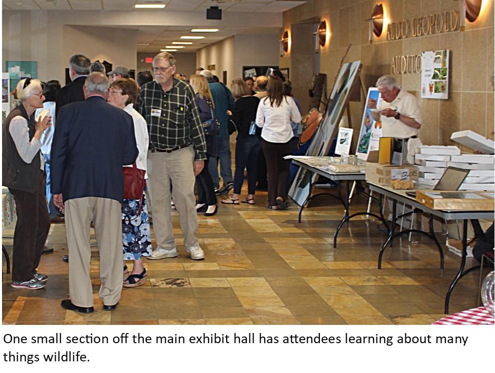 12 Exhibit Area
