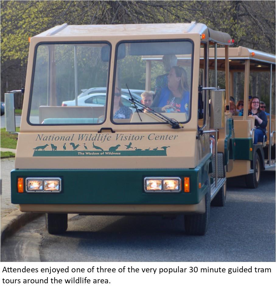 13 Tour Tram